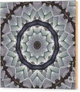 Kaleidoscope 63 Wood Print