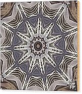 Kaleidoscope 64 Wood Print