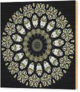 Kaleidoscope Ernst Haeckl Sea Life Series Steampunk Feel Triptyc Wood Print