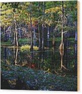 Kaleidoscope Light Wood Print