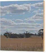 Kalgoorlie Countryside Wood Print