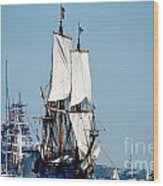 Kalmar Wood Print