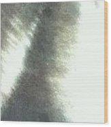 Kama Wood Print