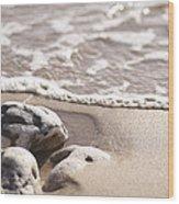 Kamaole Beach Rock Wood Print