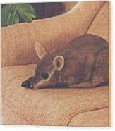Kangaroo Buddy Sculpture Wood Print