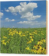 Kansas Prairie Wood Print