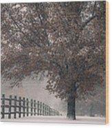 Kansas Snowstorm - Tree And Fence Wood Print