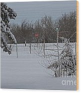 Kansas Snowy Landscape Tree's And Fence Wood Print