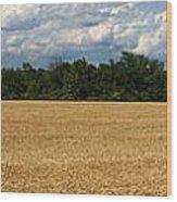 Kansas Wheat Field 5a Wood Print