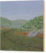 Kantola Swamp Wood Print