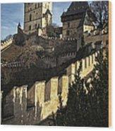 Karlstejn Castle Color Wood Print