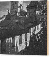 Karlstejn Castle Wood Print