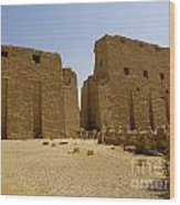 Karnak Temple 04 Wood Print