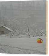Kashmir In Winter Wood Print