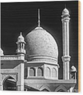 Kashmir Mosque Monochrome Wood Print by Steve Harrington