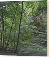 Kaskaskia Canyon Wood Print