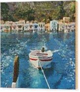 Kastellorizo Island Wood Print
