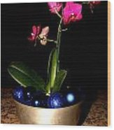 Kathy's Orchid Wood Print