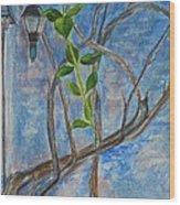 Kathy's Wall And Vine Wood Print