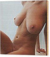Katlyn- Window Nude 6 Wood Print