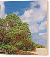 Kauai Beach Wood Print