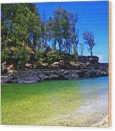 Kauai Coast 2 Wood Print