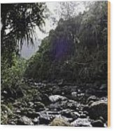 Kauai River Wood Print