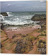Kauai Seascape I Wood Print by Maxwell Amaro