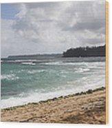 Kauai Shore Looking South Wood Print