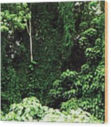Kauai Trees Wood Print