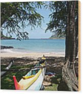 Kauai Watersports Wood Print
