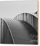 Kauffman Center Black And White Curves Photography Wood Print