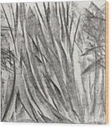Kauri Giant Wood Print