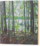 Kawawaymog 3 Wood Print