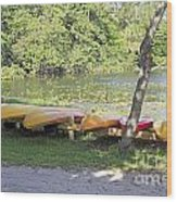 Kayak Rentals Wood Print