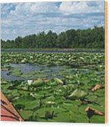 Kayaking Among The Waterlillies Wood Print