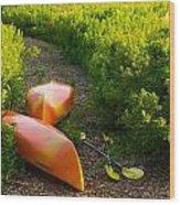 Kayaks At The Cottage Wood Print
