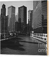 Kayaks On The Chicago River - Black Wood Print