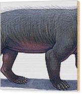 Kayentatherium, A Mammal-like Wood Print