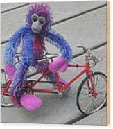 Toy Monkey On Toy Bike Wood Print