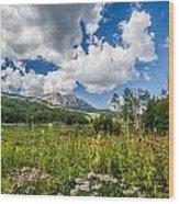 Kebler Pass Meadow Wood Print