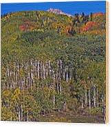Kebler Pass Panorama Wood Print