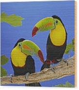 Keel-billed Toucan Pair Wood Print