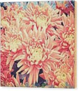 Keepsake Chrysanthemum  Wood Print