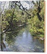 Kelly Springs  Wood Print
