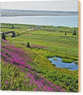 Kenai River Outlet On The Cook Inlet In Kenai-ak Wood Print