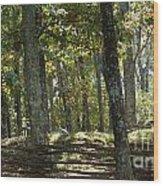 Kennesaw Battlefield Mountain Wood Print