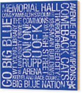 Kentucky College Colors Subway Art Wood Print by Replay Photos