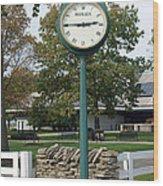 Kentucky Horse Park Wood Print by Roger Potts