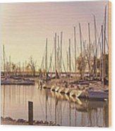 Kentucky Lake Sail Boats Wood Print